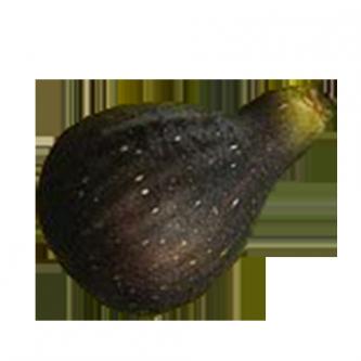"""<p class=""""nom"""">La Col de dame noir</p><p class=""""description"""">Sa saveur est si sucrée naturellement, qu'on dirait presque qu'elle est confite. Les palais les plus avertis, lui trouveront même un petit arrière goût de mangue.</p>"""