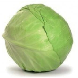 """<p class=""""nom"""">Chou vert lisse</p><p class=""""description"""">Les fines feuilles de ce chou pommé sont excellentes crues coupées en fines lamelles. Il s'accommode aussi très bien cuit en potage ou potée. Ses grandes feuilles larges se prêtent particulièrement bien aux recettes de chou farci.</p><p class=""""disponibilite"""">Toute l'année.</p>"""