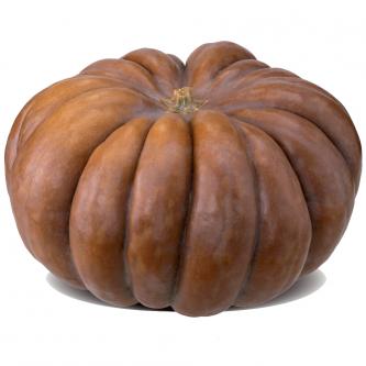 """<p class=""""nom"""">Muscade</p><p class=""""description"""">2 à 10kg et plus. Saveur : légèrement sucrée et musquée. Cuisine : purée/potage, dessert.</p><p class=""""disponibilite"""">septembre à mars</p>"""