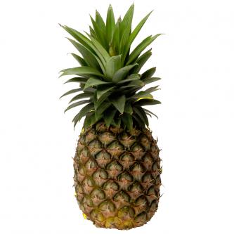 """<p class=""""nom"""">L'ananas Pain de sucre (Togo)</p><p class=""""description"""">Pourquoi on l'aime? Pour son goût de miel intense et sa forme originale.  Même mûrs, les ananas Cayenne lisse et Pain de sucre du Togo gardent leur robe verte, ce qui n'enlève rien à leur saveur unique, délicieusement sucrée. En bio, il n'y a aucun artifice pour les colorer!</p>"""