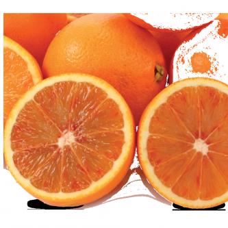 """<p class=""""nom"""">Washington sanguine du Maroc</p><p class=""""description"""">Longue, juteuse, sucrée et légèrement acidulée, comparable à sa cousine la Maltaise</p><p class=""""specificite"""">demi-sanguine</p><p class=""""disponibilite"""">février à mars.</p>"""