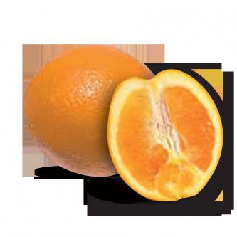 """<p class=""""nom"""">Navel du Maroc</p><p class=""""description"""">Elles sont faciles à éplucher, parfumées, sucrées, juteuses et quasi sans pépins.</p><p class=""""specificite"""">déguster</p><p class=""""disponibilite"""">fin janvier à début février.</p>"""