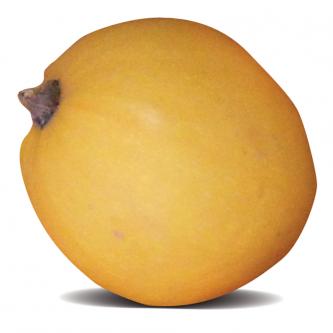 """<p class=""""nom"""">Pomme d'or</p><p class=""""description"""">200 à 250g. Saveur : plutôt neutre. Cuisine : farcie, au four.</p><p class=""""disponibilite"""">juillet à octobre</p>"""