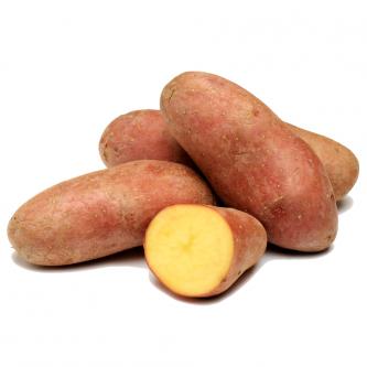 """<p class=""""nom"""">Chérie</p><p class=""""description"""">Pomme de terre à chair ferme. Se distingue par sa peau rouge et lisse, un régal en salade.</p><p class=""""specificite"""">vapeur, eau, rissolées, sautées, gratin, ragout</p>"""