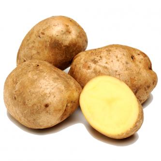 """<p class=""""nom"""">Bintje</p><p class=""""description"""">Pomme de terre à chair farineuse. Bonne en purée, elle reste la reine des frites !!</p><p class=""""specificite"""">four, soupe, purée, frites</p>"""