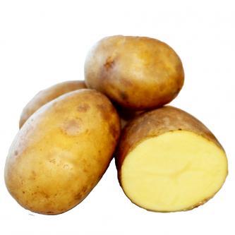 """<p class=""""nom"""">Maiwen</p><p class=""""description"""">Pomme de terre à chair fondante. Convient à diverses utilisations: four, purées, potages</p><p class=""""specificite"""">four, soupe, potage, purée</p>"""