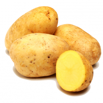 """<p class=""""nom"""">Safrane</p><p class=""""description"""">Pomme de terre à chair fondante. Excellent goût et tenue à la cuisson.</p><p class=""""specificite"""">four, soupe, potage, purée</p>"""