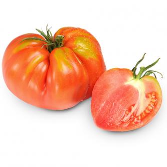 """<p class=""""nom"""">La Cœur de Bœuf</p><p class=""""description"""">Sa caractéristique : Son goût est à la hauteur de sa réputation : exceptionnel ! Sa chair pleine est sucrée et hyper savoureuse ! attention, la vraie tomate Cœur de Bœuf est lisse et non côtelée. Rouge, orange, noire , rose ... On peut la retrouver en une multitude de couleurs, pour toujours plus de plaisir et de diversité dans l'assiette!</p>"""