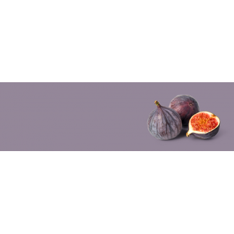 Figues Bio