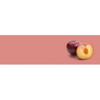 Prunes Bio