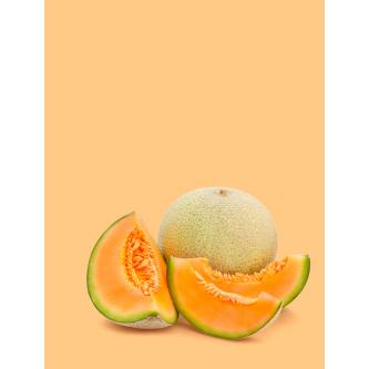 Variétés Melons et Pastèques Bio