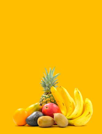 Fruits Exotiques Bio