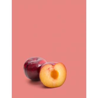 Variétés Prunes Bio