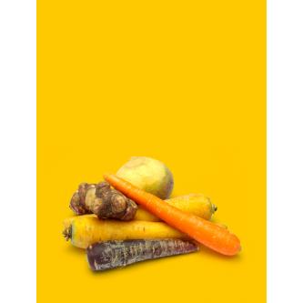 Variétés Légumes Anciens Bio