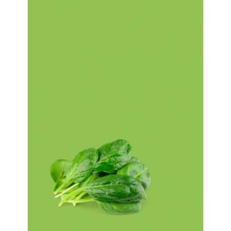 Variétés Salades Bio